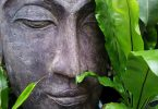 Zen boudha